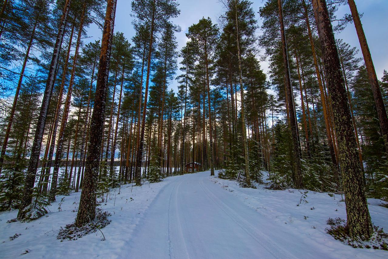 finland winter