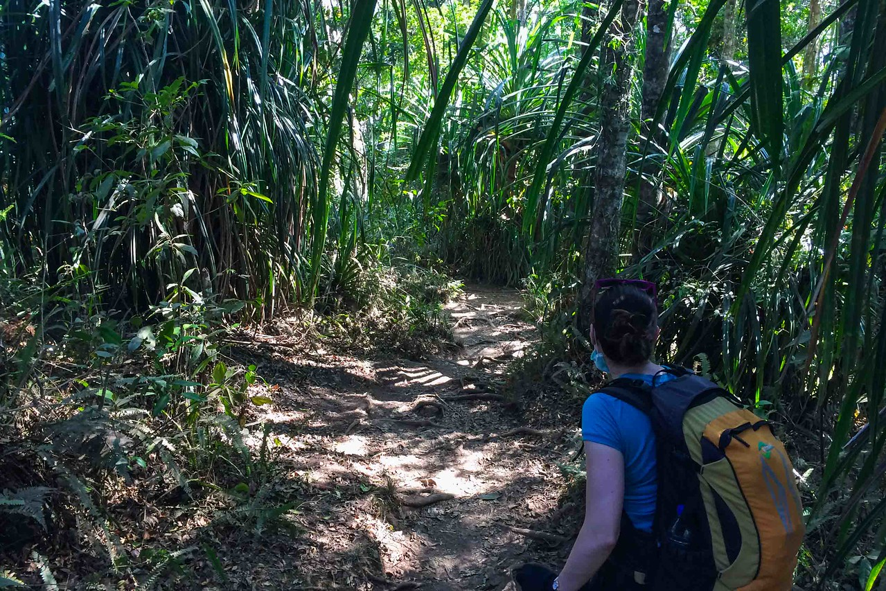 Mount Rinjani trek Day 4